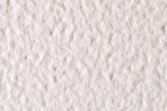 Bianco-Polare_FOSSIL